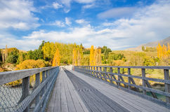 Historyczny most nad Shotover rzeką, Nowa Zelandia Obraz Stock
