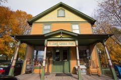 Historyczny Ogólny sklep Fotografia Stock