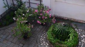 Historyczny podwórze Historyczny dom z pięknymi kwiatami i dziejowym wodnym well zbiory