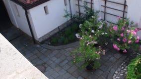 Historyczny podwórze Historyczny dom z pięknymi kwiatami i dziejowym wodnym well Depresja DOF zbiory wideo