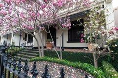Historyczny tarasu dom w Wschodnim Melbourne w Australia fotografia stock