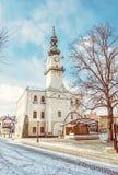 Historyczny urząd miasta w głównym placu, Kezmarok, Sistani, kolor żółty fi Obrazy Stock