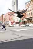 Historyczny W centrum Nashville Zdjęcia Stock