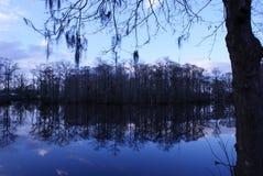 Hiszpański mech przy Trenton młynem w Pólnocna Karolina obrazy royalty free