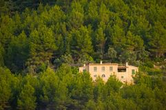 Hiszpańszczyzny drylują budynek wśród drzew Obrazy Royalty Free