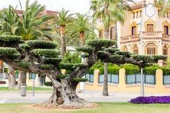 Hiszpania Zdjęcie Royalty Free