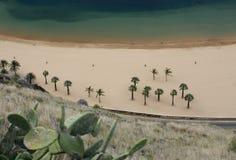 HISZPANIA wyspy kanaryjska TENERIFE Zdjęcie Stock
