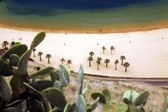 HISZPANIA wyspy kanaryjska TENERIFE Zdjęcia Royalty Free