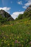 Hiszpanii asturii Obraz Royalty Free