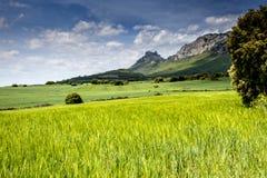 Hiszpanii krajobrazu Zdjęcia Stock