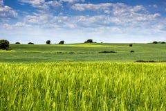 Hiszpanii krajobrazu Fotografia Royalty Free