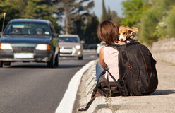 Hitchhike traveler with dog on the road Royalty Free Stock Photography