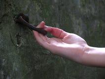 hitching δαχτυλίδι αλόγων Στοκ εικόνες με δικαίωμα ελεύθερης χρήσης
