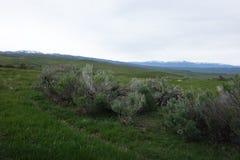 Hitt and Cuddy Mountains, Idaho Stock Images