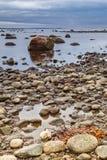 Hittarp多岩石的海滩 免版税库存图片