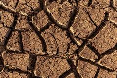 Hitte verbrijzelde aarde in de woestijn stock afbeelding