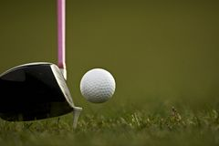Hitting the ball with a club. Stock Images