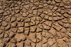 Hitze, ausgetrockneter Boden der Dürre Lizenzfreie Stockbilder