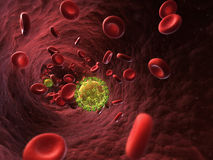 HIV close up Royalty Free Stock Photography