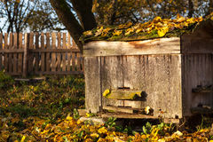 Hive in autumn Stock Photo