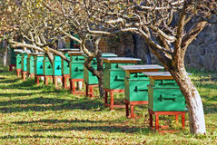 Hive of bees Stock Photo