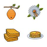 A hive on a branch, a bee on a flower, a honeycomb with honey, a honey cake.Apiary set collection icons in cartoon style Royalty Free Stock Images