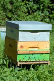 A hive in a field royalty free stock image