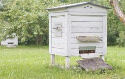 Hive in the garden Stock Photos