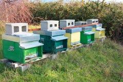hive hives diversas fileiras das casas para abelhas de cores diferentes fotos de stock