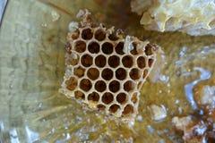Hive honey Stock Photos