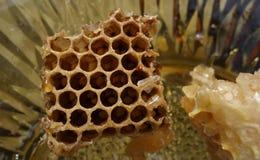Hive honey Stock Photo