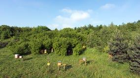 Hive in Paris suburb Stock Image