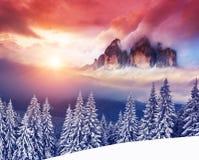 Hiver étonnant dans les montagnes photos libres de droits