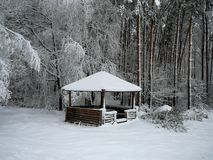 Hiver photographie stock