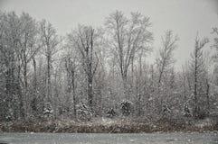 Hiver au Michigan du sud-est Photographie stock