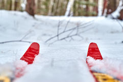 Hiver augmentant sur des skis Photo libre de droits
