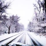 Hiver blanc de whiteandblack de glace d'arbres de temps de neige Photo libre de droits