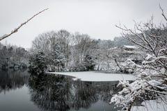 Hiver d'étang congelé par Higashi de Minakuchi, Shiga, Japon photographie stock libre de droits