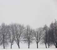 Hiver dans la neige Image libre de droits