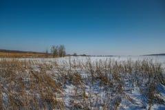 Hiver dans la steppe ukrainienne Image libre de droits