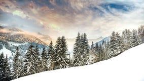 Hiver dans les Alpes Froid et beauté Photo libre de droits