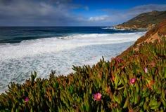 Hiver de Big Sur Photographie stock libre de droits
