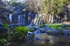Hiver de cascade de Shiraito dans les collines du sud-ouest du mont Fuji, Shizuoka, Japon Photographie stock