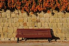 Hiver de floraison accrochant de fleurs oranges au-dessus d'un banc rouge Images stock
