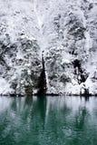 Hiver de lac Photographie stock