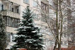 Hiver en capitale de secteur de Seskine de ville de la Lithuanie Vilnius Photographie stock libre de droits