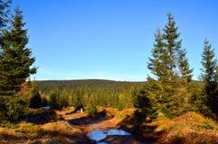 Hiver en montagnes Photo libre de droits