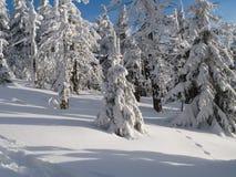 Hiver en montagnes, nouvelle année Image stock