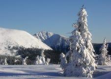 Hiver en montagnes tchèques avec Snezka Photo stock