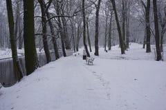 Hiver en parc 13 Photo libre de droits